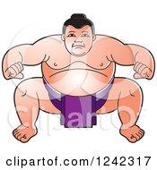 Crouching Sumo Wrestler In Purple