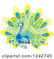 Cute Happy Peacock Bird With Colorful Plumage