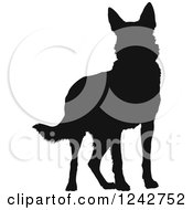 Black Silhouetted German Shepherd Dog Standing