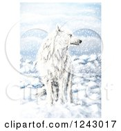 Clipart Of A White Wolf In The Snow Royalty Free Illustration by lineartestpilot