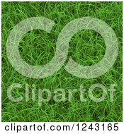 Clipart Of A 3d Green Grass Seamless Texture Background Royalty Free Illustration