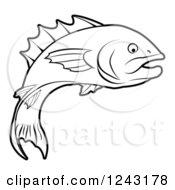 Black And White Fish In Profile