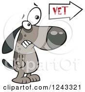 Clipart Of A Cartoon Scared Dog At The Vets Office Royalty Free Vector Illustration by toonaday