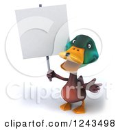 Clipart Of A 3d Mallard Drake Duck Holding A Blank Sign Royalty Free Illustration
