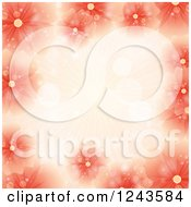 Red And Orange Flower Background With Rays And Text Space