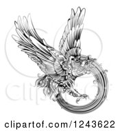 Clipart Of A Black And White Engraved Majestic Phoenix Bird Flying Royalty Free Vector Illustration