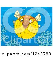 Clipart Of A Happy Puffer Fish Over Corals Royalty Free Vector Illustration