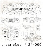 Retro Ornaments Designs With Sample Text On A Distressed Background