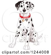 Clipart Of A Cute Happy Dalmatian Dog Sitting Royalty Free Vector Illustration by Pushkin