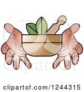 Clipart Of Hands Holding A Mortar And Pestle With Leaves Royalty Free Vector Illustration
