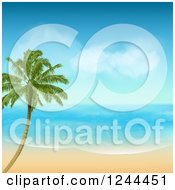 Clipart Of A Lone Palm Tree On A Tropical Island On A Sunny Day Royalty Free Vector Illustration