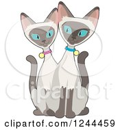 Clipart Of A Blue Eyed Siamese Cats Royalty Free Vector Illustration by Maria Bell