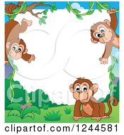 Border Of Playful Monkeys And White Text Space