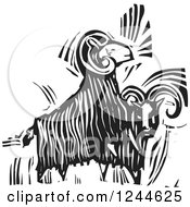 Clipart Of Black And White Woodcut Ram Goats Royalty Free Vector Illustration