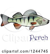 Clipart Of A Perch Fish With Text Royalty Free Vector Illustration