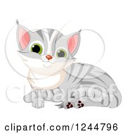 Clipart Of A Cute Gray Tabby Cat Kitten Resting Royalty Free Vector Illustration by Pushkin