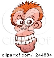 Clipart Of A Mad Grinning Monkey Face Royalty Free Vector Illustration by Zooco