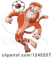Clipart Of A Soccer Monkey Tapping A Football On His Chest Royalty Free Vector Illustration by Zooco