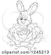 Clipart Of A Black And White Happy Bunny Rabbit Sitting With Cabbage In A Garden Royalty Free Vector Illustration