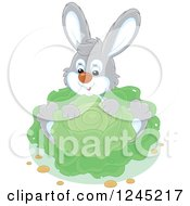 Clipart Of A Happy Gray Rabbit Sitting With Cabbage In A Garden Royalty Free Vector Illustration by Alex Bannykh