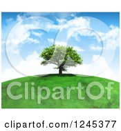 Clipart Of A 3d Mature Tree Atop A Grassy Hill Against A Cloudy Sky Royalty Free Illustration