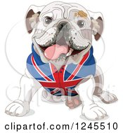 Clipart Of A Cute Bulldog Sitting In A British Flag Shirt Royalty Free Vector Illustration by Pushkin