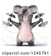 Clipart Of A 3d Koala Working Out With Dumbbells 3 Royalty Free Illustration