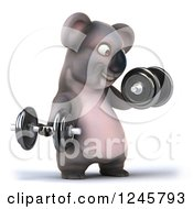 Clipart Of A 3d Koala Working Out With Dumbbells 2 Royalty Free Illustration