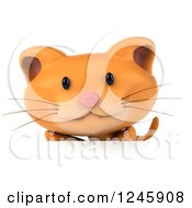 Clipart Of A 3d Ginger Cat Over A Sign Royalty Free Illustration