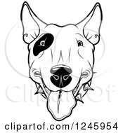Clipart Of A Black And White Bull Terrier Dog Face Royalty Free Vector Illustration