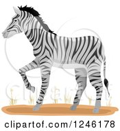 Clipart Of A Zebra Walking Royalty Free Vector Illustration by BNP Design Studio