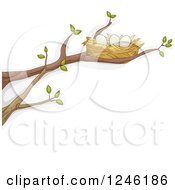 Clipart Of A Bird Nest With Eggs On A Tree Branch Royalty Free Vector Illustration