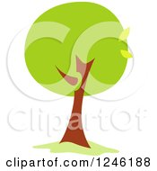 Tree With Green Foliage