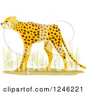 Clipart Of An African Cheetah Royalty Free Vector Illustration