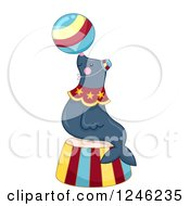 Clipart Of A Circus Sea Lion Balancing A Ball On A Podium Royalty Free Vector Illustration