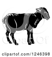 Clipart Of A Black Lamb In Profile Royalty Free Vector Illustration