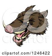 Clipart Of A Snarling Aggressive Razorback Boar Mascot Head Royalty Free Vector Illustration by AtStockIllustration