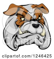 Clipart Of A Snarling Aggressive Bulldog Mascot Head Royalty Free Vector Illustration