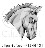 Clipart Of A Gray Aggressive Horse Mascot Head Royalty Free Vector Illustration