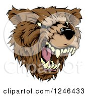 Clipart Of A Roaring Aggressive Bear Mascot Head Royalty Free Vector Illustration
