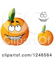 Clipart Of Apricots Royalty Free Vector Illustration