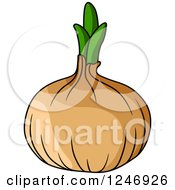 Clipart Of A Yellow Onion Royalty Free Vector Illustration