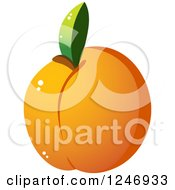 Clipart Of An Apricot Royalty Free Vector Illustration