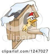 Yellow Bird Wearing A Christmas Santa Hat And Peeking Out Of A Bird House