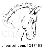 Clipart Of A Tough Black And White Horse Head Mascot Royalty Free Vector Illustration
