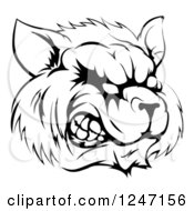 Clipart Of A Black And White Snarling Raccoon Mascot Head Royalty Free Vector Illustration by AtStockIllustration