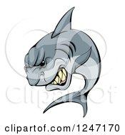 Vicious Shark Mascot Attacking