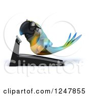 Clipart Of A 3d Bespectacled Blue And Yellow Macaw Parrot Running On A Treadmill Royalty Free Illustration