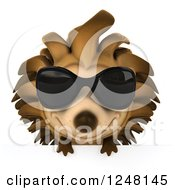Clipart Of A 3d Happy Hedgehog Wearing Sunglasses Over A Sign Royalty Free Illustration by Julos