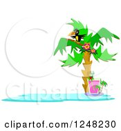 Clipart Of A Tropical Toucan Bird In A Palm Tree Over A Cocktail Royalty Free Vector Illustration